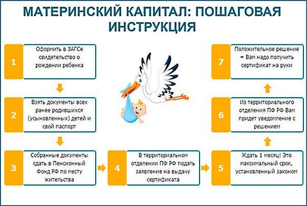 Пошаговая инструкция на получение материнского капитала