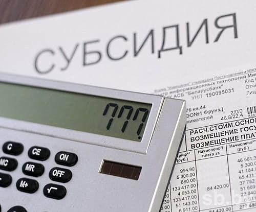 Предварительный расчет максимального размера бюджетной субсидии