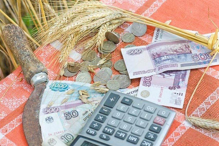Социальные выплаты на покупку жилья в сельской местности